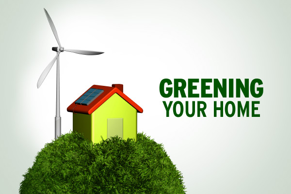 Green Your Home things you can do to make green your home - thermostat